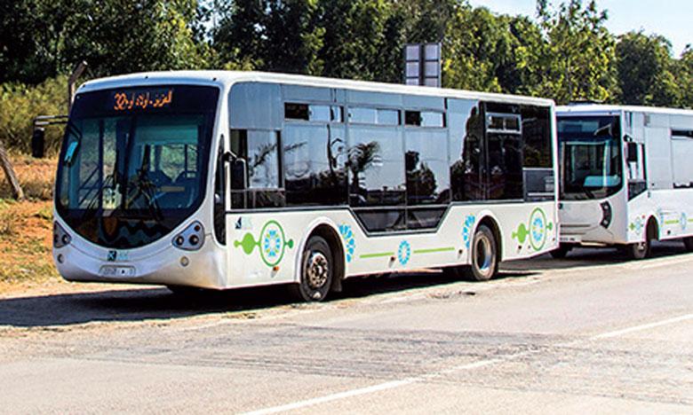Le transport urbain, le calvaire quotidien vécu par les habitants de Kénitra