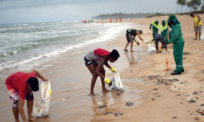 L'ONU s'inquiète, la faune marine menacée
