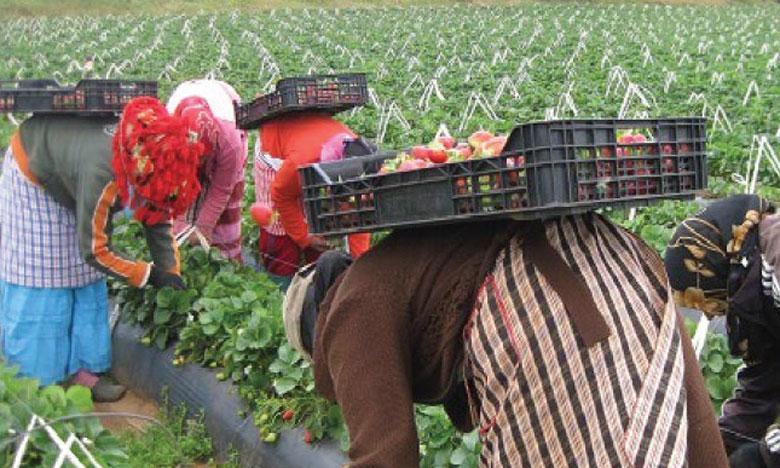 La situation de la femme rurale au Maroc peu satisfaisante