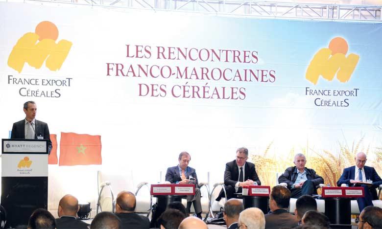 La France fournirait 65% des besoins du Maroc en blé tendre