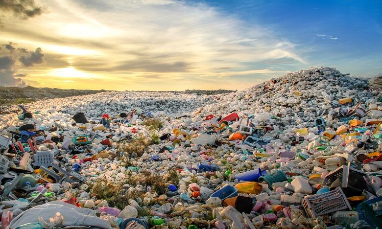 Pour la deuxième année consécutive, Coca-Cola s'est classé au premier rang des pollueurs avec 11.732 déchets plastiques collectés dans 37 pays. Ph. Shutterstock