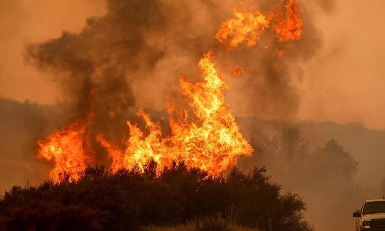 Incendies en Californie : un mort et des milliers d'évacués
