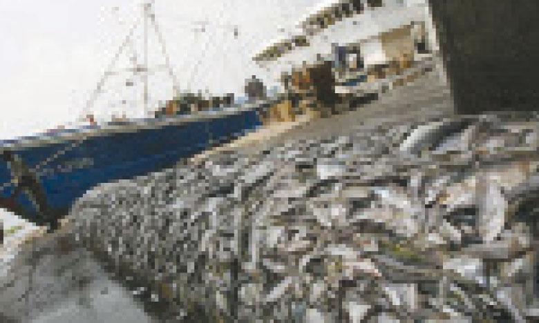 La FAO met en ligne le premier  Atlas de surveillance des activités  de pêche