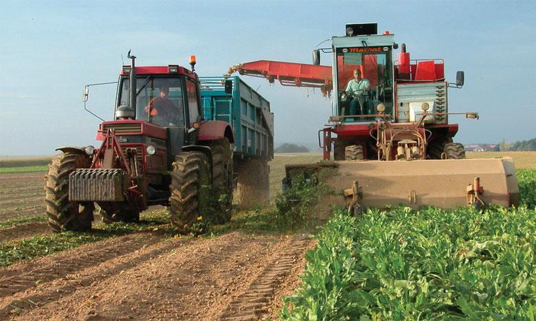 Les superficies programmées en betterave à sucre sont de 15.000 ha et de 3.000 ha pour les nouvelles plantations de canne à sucre.