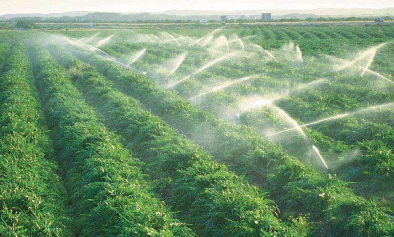 Lancement d'un projet d'irrigation de 140 millions  de dollars