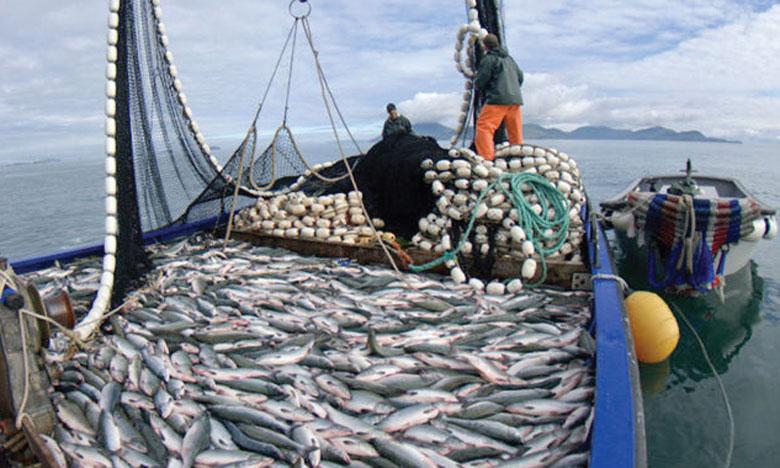 La FAO publie un Atlas mondial  de surveillance des activités de pêche