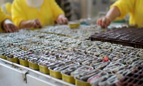 Alerte sur les boulettes de sardine «Carle» : L'ONSSA s'explique