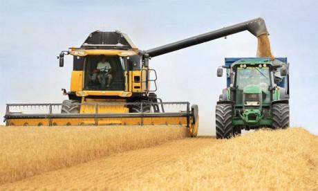 La dépendance alimentaire du pays se réduira, mais...