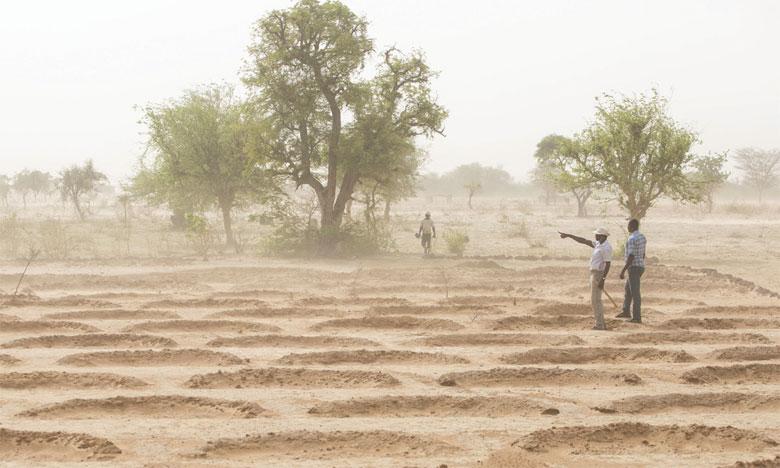 La FAO lance la première évaluation mondiale