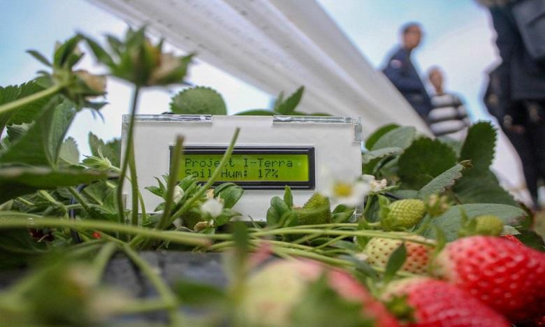 Enactus-EMI lance le projet I-TERRA en faveur des petits agriculteurs