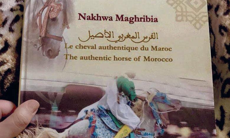 Le  livre «Le cheval authentique  du Maroc» présenté à Rabat