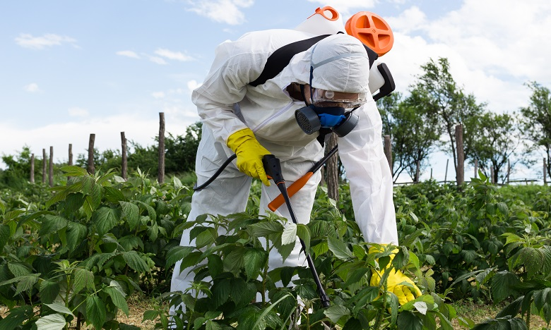 Le chlorpyrifos est un insecticide utilisé dans les cultures de fruits et légumes dont la licence dans l'UE expire fin janvier 2020. Ph. Shutterstock