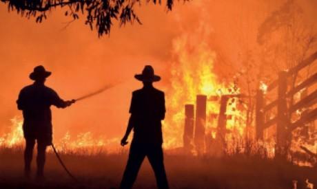 L'état d'urgence décrété en raison de la chaleur et des incendies