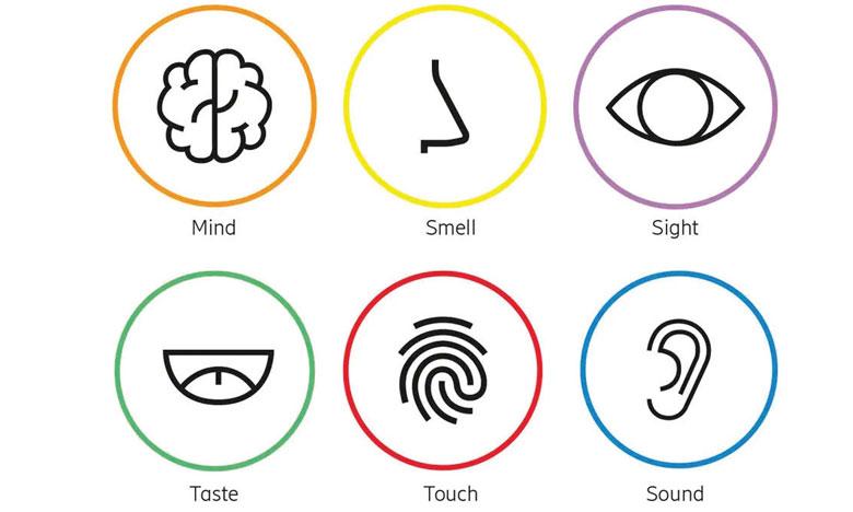 Les consommateurs s'attendent à ce qu'une gamme de services issus de la technologie connectée et interagissant avec nos sens de la vue, de l'ouïe, du goût, de l'odorat et du toucher devienne réalité d'ici 10 ans.