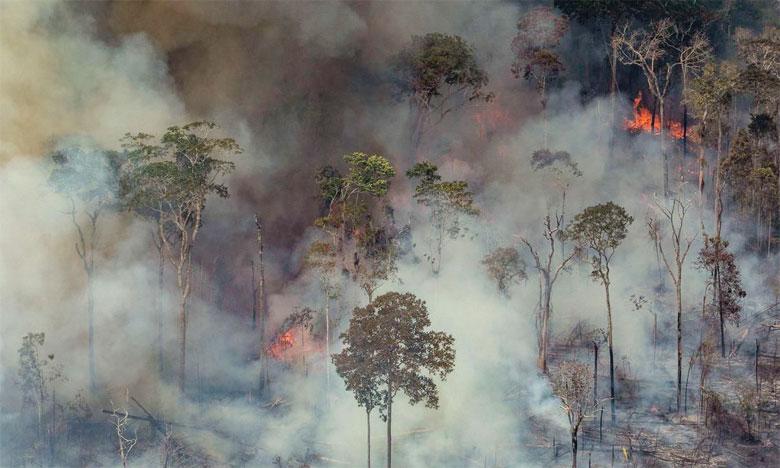 Le nombre d'incendies de forêt en Amazonie brésilienne a augmenté de 30% en 2019 par rapport à l'année  précédente. Ph. AFP