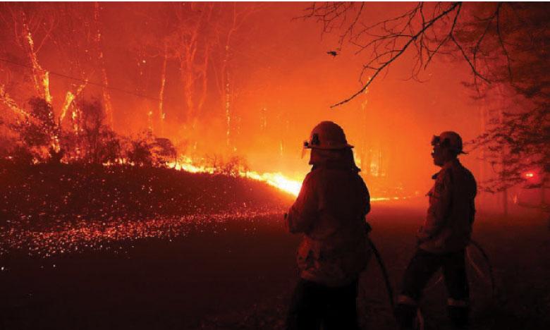 Le gouvernement australien s'est engagé à débloquer 1,2 milliard d'euros sur deux ans dédiés à la réparation des dommages causés par les incendies. Ph. DR