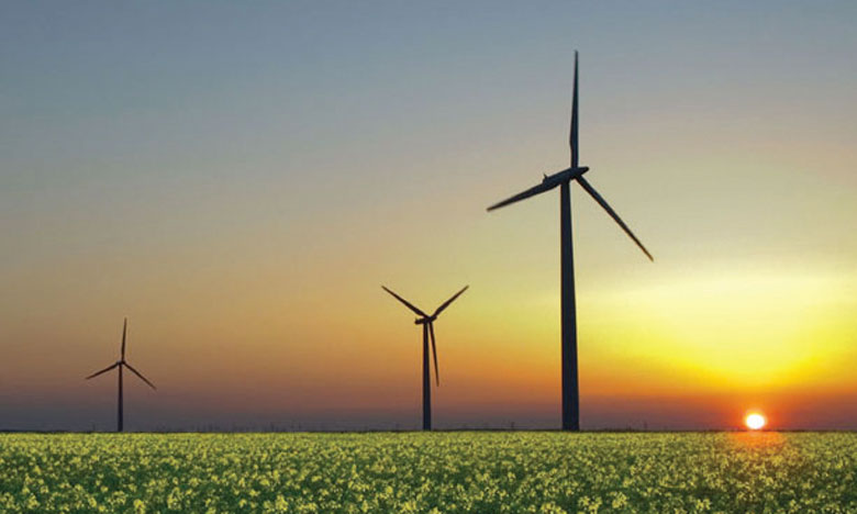 «Le changement climatique fait peser de sérieux risques sur la stabilité financière mondiale», souligne Laura Chappell,  directrice générale du fonds de pension. Ph. DR