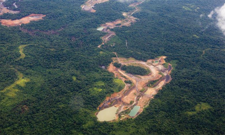 Quelque 129 millions d'hectares de forêts, une superficie presque équivalente en taille à l'Afrique du Sud, ont été perdus depuis 1990. Ph. DR