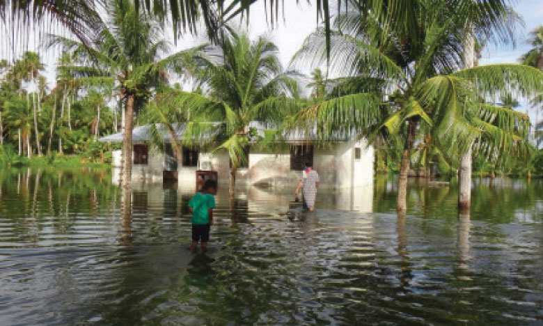 L'ONU célèbre les 25 ans des programmes  d'adaptation