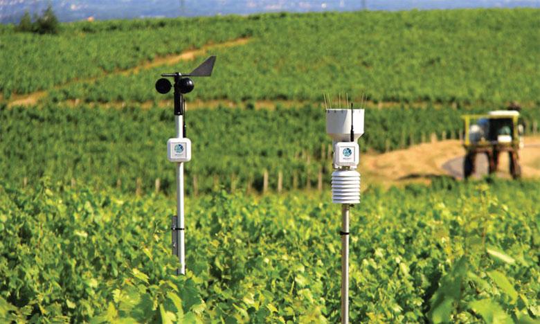 85% des pays (100 sur les 117 étudiés) ont identifié les services climatologiques comme un élément fondamental de la  planification du secteur agricole. Ph. DR