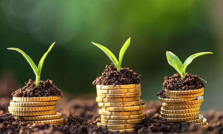 Il s'agira de concevoir un programme de renforcement des capacités pour accompagner les acteurs régionaux dans la préparation de projets de financement climatique bancables, durables et inclusifs.