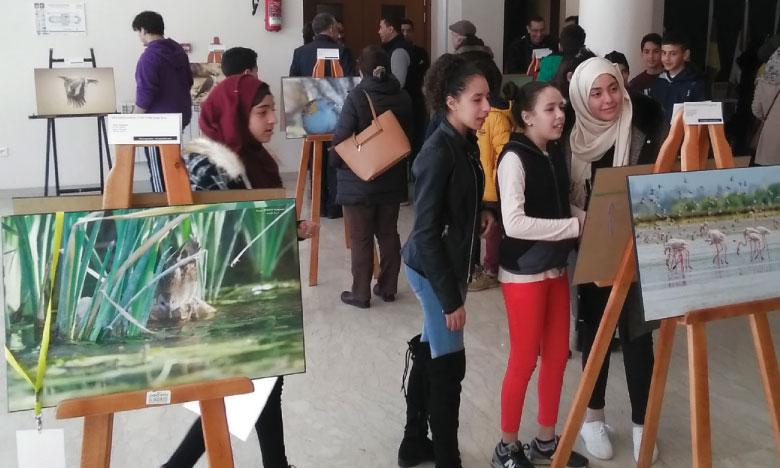 La photographie animalière s'invite  à l'Université Al Akhawayn