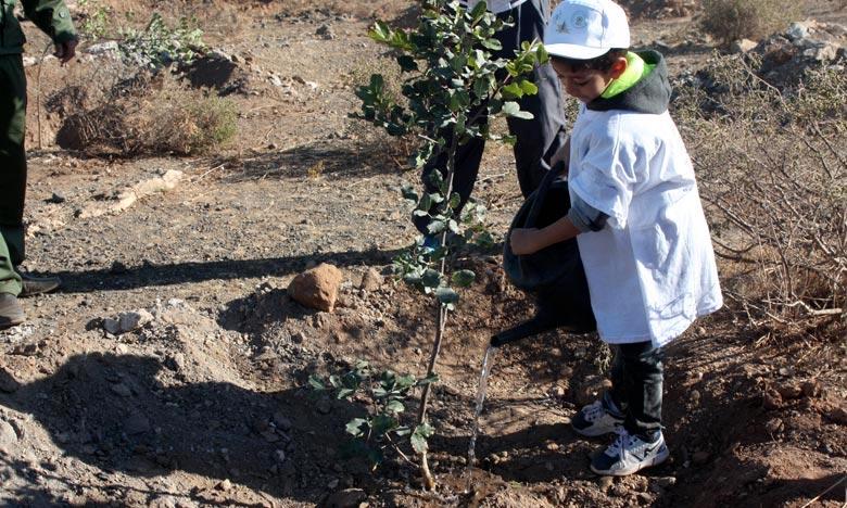 La «Semaine verte» permettra de sensibiliser le plus grand nombre de personnes à la protection des plantes et des arbres, sources précieuses d'oxygène et principales composantes de la sécurité hydrique et alimentaire. Ph : MAP