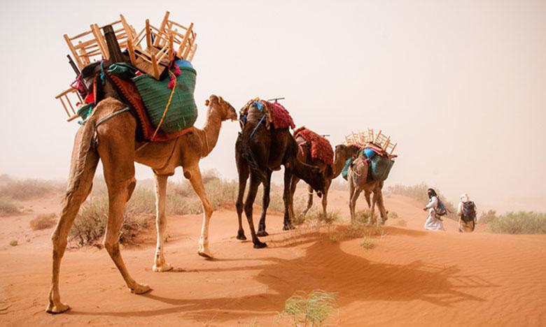 «Kafila», une caravane culturelle et scientifique sillonne le sud du Maroc