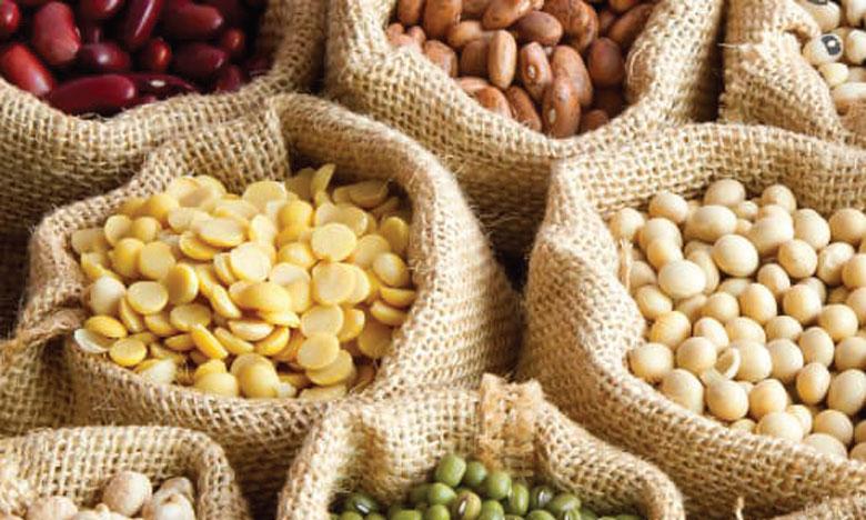 Riches en nutriments, les légumineuses augmentent aussi la fertilité des sols. Ph. DR