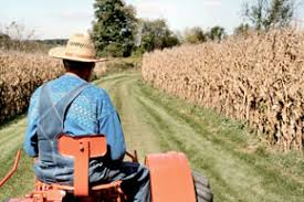 Sécheresse et Covid 19, le monde rural souffre doublement