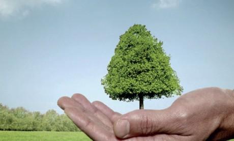 Le Maroc aura son Code de l'environnement