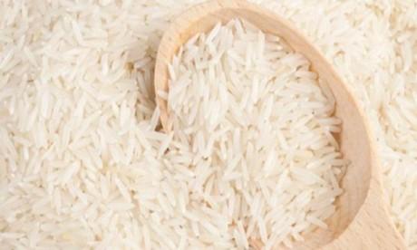 Approvisionnement du marché national en riz : La FNIR rassure
