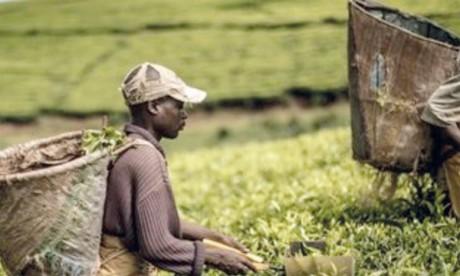 L'Afrique atteint un seuil critique