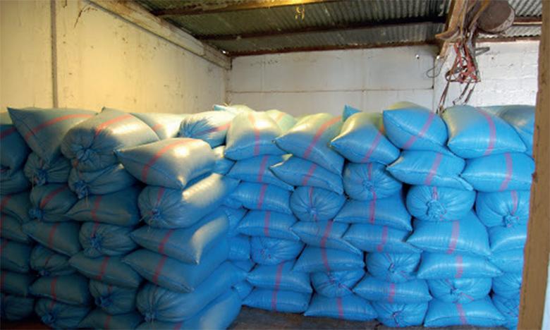 Distribution de plus de 14.500 quintaux d'orge subventionnée aux éleveurs