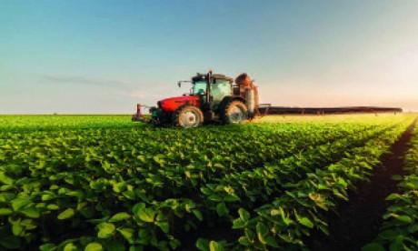 Une bonne production agricole en perspective au niveau régional