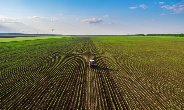 La production agricole se poursuit et couvre largement les besoins