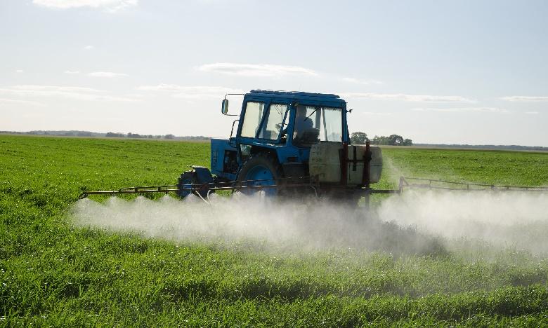 Pesticides : L'ONSSA réexamine les autorisations d'utilisations de « Chlorpyriphos »