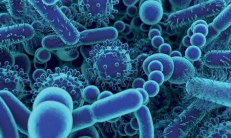 Covid-19 : Des chercheurs marocains analysent plus de 3.000 génomes du virus