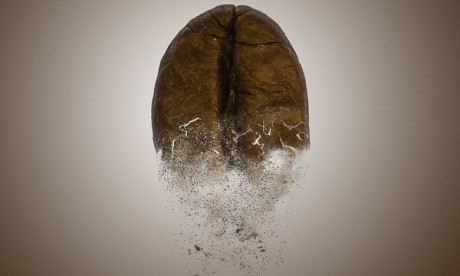 Selon le groupe présent au Maroc, Koffee'Up™ est désignée comme la « nouvelle huile d'argan » dans le secteur de la beauté en raison de son efficacité.