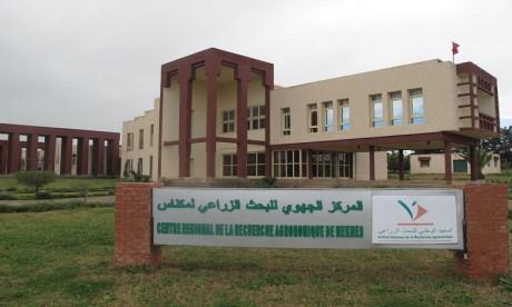 Meknès: le site  web du  Centre régional de la recherche agronomique fait peau neuve