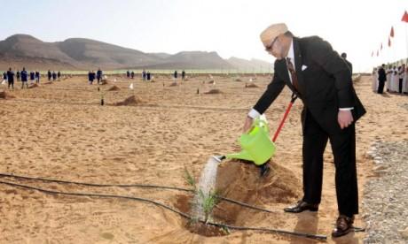 «Forêts du Maroc 2020-2030» : Une stratégie consacrant la Vision Royale d'un développement durable