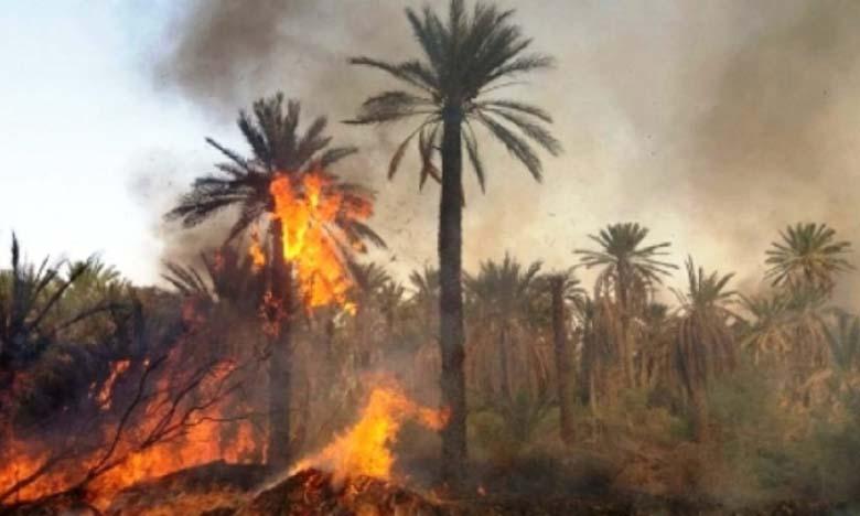 Un programme d'autoprotection contre les incendies dans les oasis
