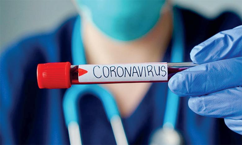 Des scientifiques analysent l'efficacité des tests PCR  et sérologiques