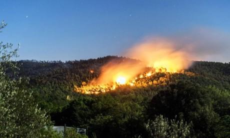 Tanger: L'incendie de la  Forêt diplomatique maîtrisé