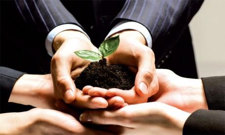 Un écosystème en devenir pour accompagner le développement des startups
