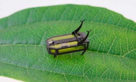 """Des scientifiques ont développé un mini-robot """"scarabée"""" qui avance sans batterie"""