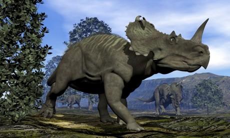 Le premier cas de cancer connu découvert chez un dinosaure