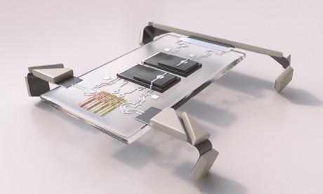 Technologie: Des robots de la taille d'un cheveu peuvent marcher à quatre pattes !
