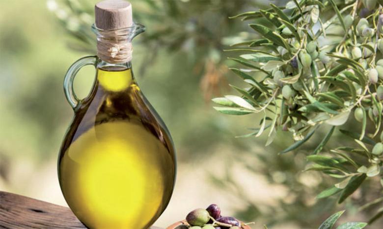 Agriculture Bio : 4 GIE spécialisés dans l'huile d'olive à certifier