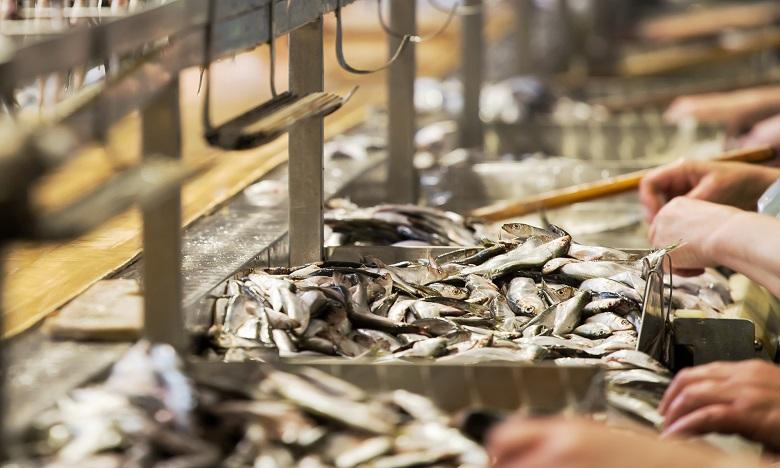 Cluster de Safi : Des poursuites judiciaires contre plusieurs responsables d'une conserverie